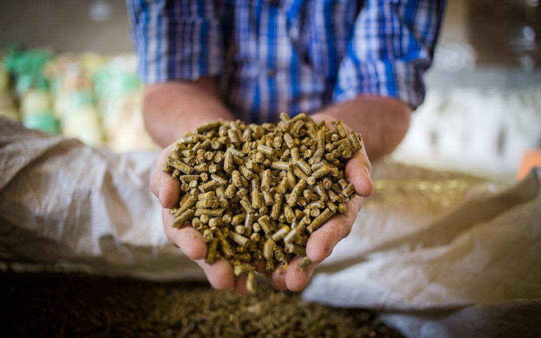 Farmers get new Fodder Storage Instant Asset Write-Off